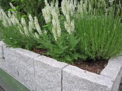 Gartengestaltung Heddesheim, Mustergärten, Granitstelen