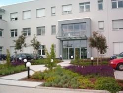 Außenanlage Gewerbeobjekt Bepflanzung Planung Grün Eingangsbereich