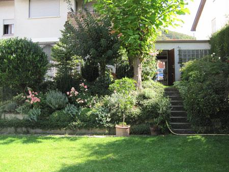 Garten Hangbepflanzung