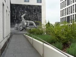 Gewerbliche Außenanlage Bepflanzung Gestaltung Eingang Rampe