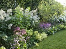 Garten Terrasse Pflanzen Gestaltung Gartenbau Vorgarten